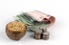 Ris är en viktig ekonomisk produkt av Thailand. royaltyfri fotografi