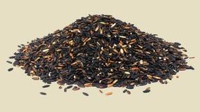 Ris eller Riceberry som isoleras p? vit bakgrund royaltyfria bilder