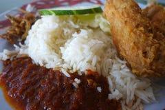 Ris för traditionell malaysian för Nasi lemak kryddiga royaltyfri bild