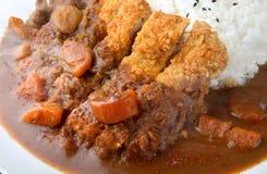 Ris med djup stekt griskött och curry royaltyfri foto