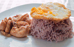 Ris med höna och griskött Royaltyfria Bilder