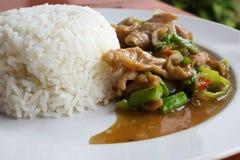 Ris med stekt griskött och basilika Fotografering för Bildbyråer
