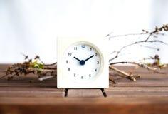 Ris och klocka på tabellen Royaltyfri Fotografi