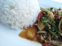 ris och rimmat griskött med chili & basilikasidor Royaltyfri Foto