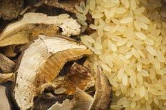 Ris och torkade porcinichampinjoner arkivfoton