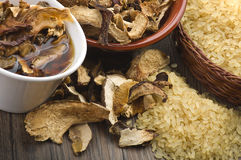 Ris och torkade porcinichampinjoner royaltyfri bild