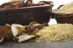 Ris och torkade porcinichampinjoner royaltyfria foton