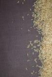 Ris på grå bakgrund Royaltyfri Fotografi