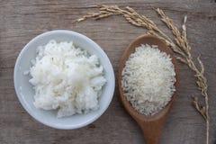 Ris ?r den huvudsakliga maten av Thailand royaltyfri fotografi