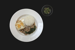 Ris som överträffas med det isolerade Fried Stir Basil, finhackat griskött och ägget Royaltyfri Bild