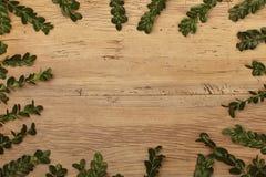 Ris som ram på trä, kopieringsutrymme arkivbild