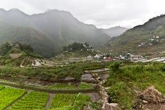 Ris terrasserar Batad philippines Royaltyfri Bild