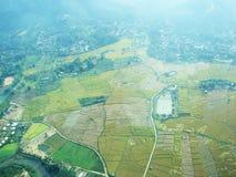 Risaia e fiume nella vista superiore Fotografia Stock