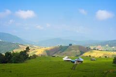 Risaia rurale di vista del paesaggio Fotografia Stock Libera da Diritti