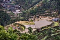 Risaia su una collina vicino al villaggio, Guizhou, Cina Fotografie Stock Libere da Diritti