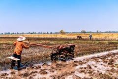 Risaie che sono state raccolte e stanno preparando per la piantatura seguente del riso fotografie stock libere da diritti