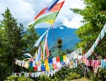 Risaie del Bhutan, Paro valle settembre 2015 Fotografia Stock