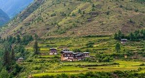 Risaie del Bhutan, Paro valle settembre 2015 Immagini Stock Libere da Diritti