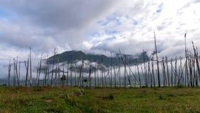 Risaie del Bhutan, Paro valle settembre 2015 Immagini Stock