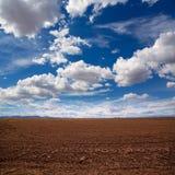 Risaie del cereale in maggesi dopo il raccolto al Mediterraneo Fotografia Stock