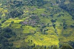 Risaie del terrazzo nel Nepal Fotografie Stock Libere da Diritti