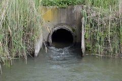 Risaie dell'impianto di irrigazione dell'ingresso Fotografia Stock Libera da Diritti