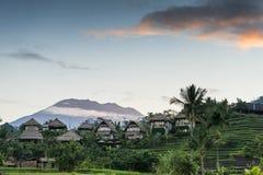 Risaie di Bali Immagini Stock Libere da Diritti