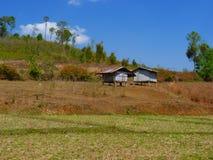 Risaie e capanna asiatiche dell'agricoltore nel periodo di siccità, coltivazione nel paese della Tailandia Immagine Stock