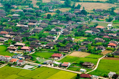 Risaie nel nord-ovest del Vietnam Fotografie Stock