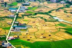 Risaie nel nord-ovest del Vietnam Fotografia Stock Libera da Diritti