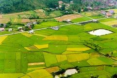 Risaie nel nord-ovest del Vietnam Immagini Stock Libere da Diritti