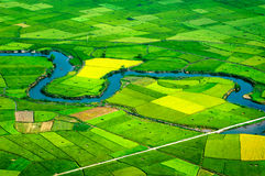 Risaie nel nord-ovest del Vietnam Fotografie Stock Libere da Diritti