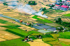 Risaie nel nord-ovest del Vietnam Immagini Stock