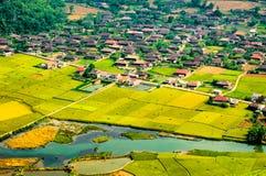 Risaie nel nord-ovest del Vietnam Immagine Stock