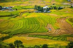 Risaie su a terrazze I campi sono preparati per la piantatura del riso Lim Mong, Huyen Mu Chang Chai, Vietnam del Nord immagini stock