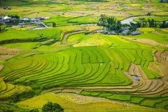 Risaie su a terrazze I campi sono preparati per la piantatura del riso Lim Mong, Huyen Mu Chang Chai, Vietnam del Nord fotografia stock