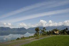 Risaie in Sumatra Fotografie Stock Libere da Diritti
