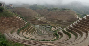 Risaie a terrazze, nel villaggio di Dazhai, il Guangxi, Cina Immagine Stock Libera da Diritti