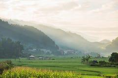 Risaie verdi e riso di agricoltura a terrazze con il tramonto sulla m. Immagini Stock