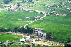 Risaie verdi e riso di agricoltura a terrazze sulla montagna alla S Immagine Stock