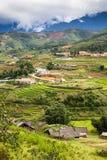 risaie verdi a terrazze nel villaggio di mA Tra, PA del Sa, Vietnam Fotografia Stock