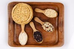 Risbär, jasminris, brun näsa, hög av unmilled riskorn, ris och fem art royaltyfri bild