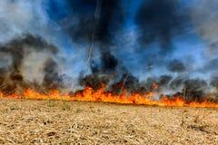 Riscaldamento globale Campo agricolo bruciante, inquinamento del fumo Fotografia Stock