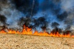 Riscaldamento globale Campo agricolo bruciante, inquinamento del fumo Immagine Stock