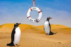 Riscaldamento globale - habitat di Penguine Immagine Stock Libera da Diritti