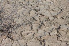 Riscaldamento globale incrinato della terra Fotografia Stock Libera da Diritti