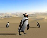 Riscaldamento globale, mutamento climatico, pinguini del deserto Immagine Stock