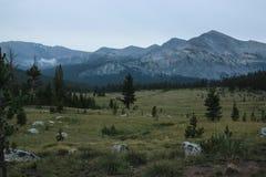 Riscaldi i pascoli asciutti in parco nazionale di Yosemite con il monolito del granito nei precedenti Immagine Stock Libera da Diritti