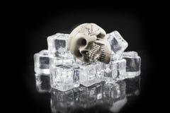 Rischi del ghiaccio immagine stock