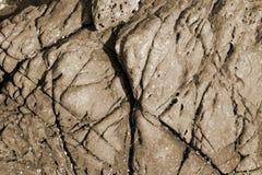 Risco da pedra do Sepia imagens de stock
